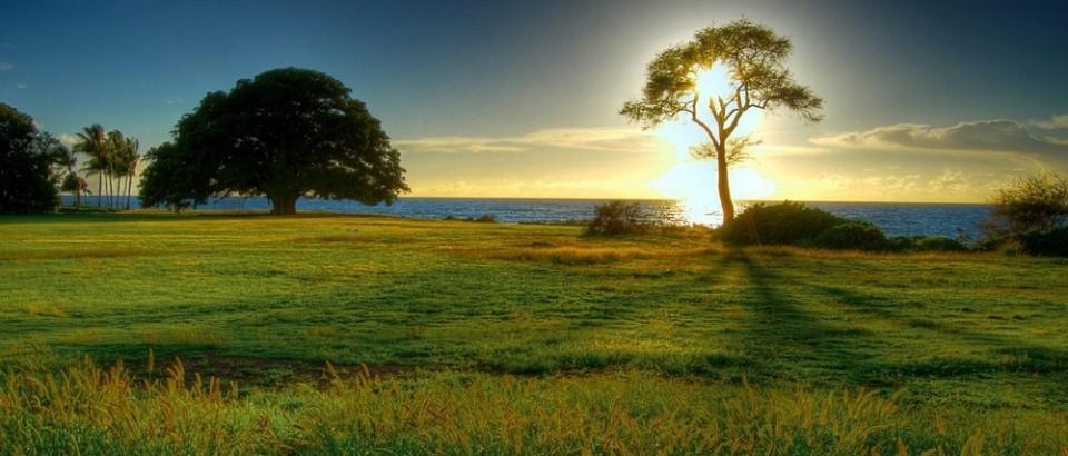 paesaggio_natura